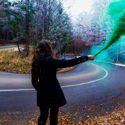Comment utiliser un fumigène Anti-puce? Animaux